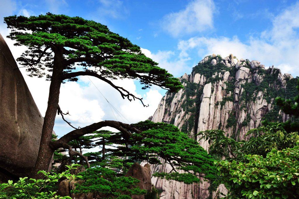 中國 安徽 黃山|天下第一奇山 5大遊玩路線攻略 中國 安徽 黃山 shutterstock 133804553