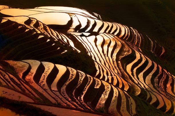 中國 華南|廣西 5大山水人文特色景點!灕江、蘆笛岩、德天瀑布、龍脊金坑梯田、少數民族 中國 廣西 龍脊金坑梯田longji Jinkeng Rice Terraces 2