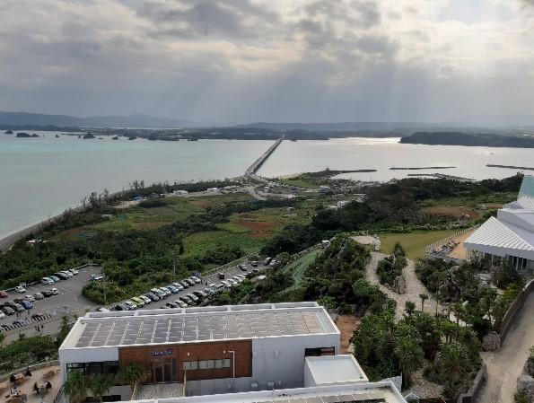【沖繩自由行】出發前必看的租車、必買票卷、人氣景點與3大行程規劃! 15