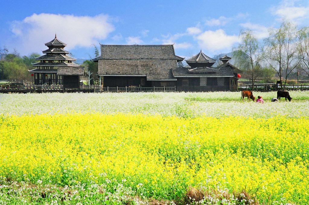 中國 桂林 世外桃源|山水、人家、田園都融匯成一幅水墨丹青