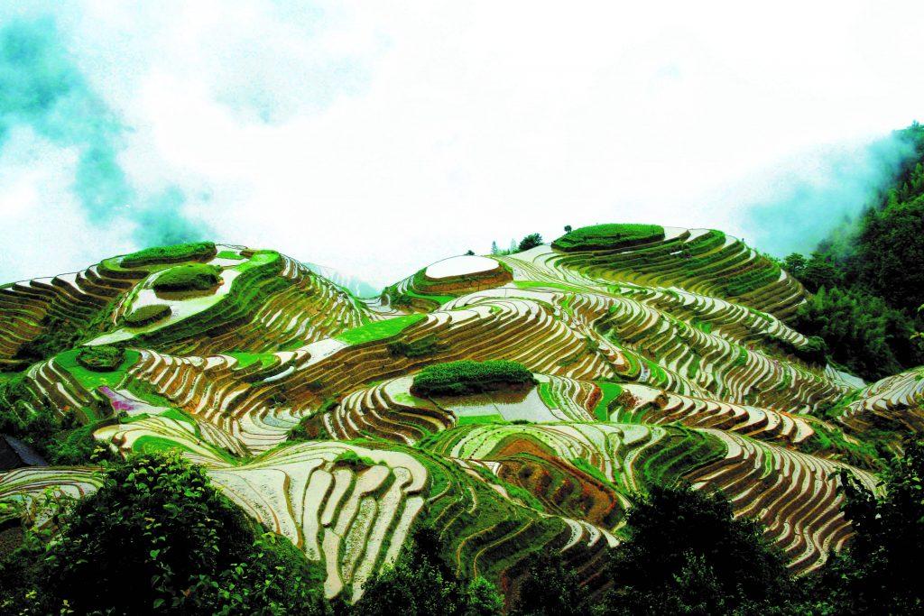 中國 桂林 龍脊梯田|中國的十大梯田之一