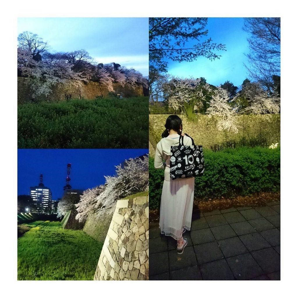 追星到日本去!! 超強旅遊攻略以及5間人氣餐廳一次滿足~名古屋篇 日本名古屋 Japan Nagoya 名古屋城
