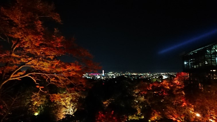 日本關西|令人驚艷的4大京都賞楓景點! 超詳細的攻略介紹! 日本關西賞楓 JAPAN Kansai Maple 2