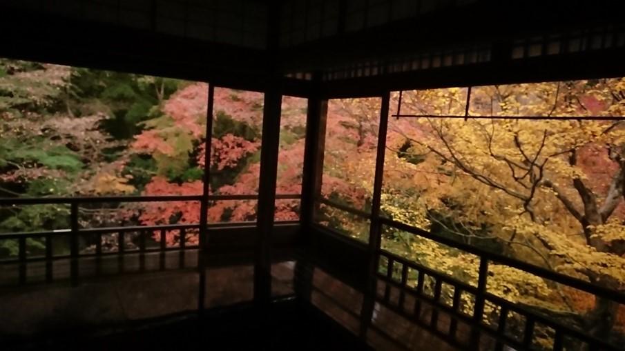 日本關西|令人驚艷的4大京都賞楓景點! 超詳細的攻略介紹! 日本關西賞楓 JAPAN Kansai Maple 琉璃光院