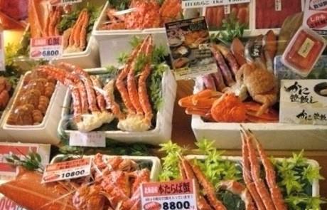 12月來去北海道!超詳細好吃、好住、好玩、好買的日本行程~可別錯過啦! 日本 北海道 japan hokkaido 函館朝市 2