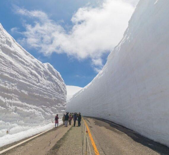 日本北陸 | 超震撼!黑部立山雪牆奇景,一次體驗6種交通工具