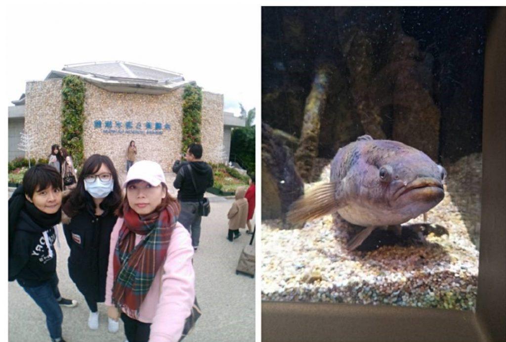 日本沖繩|自由行4天3夜行程規劃,必去景點&必吃美食全收錄! 沖繩 Okinawa 沖繩美麗海水族館 1