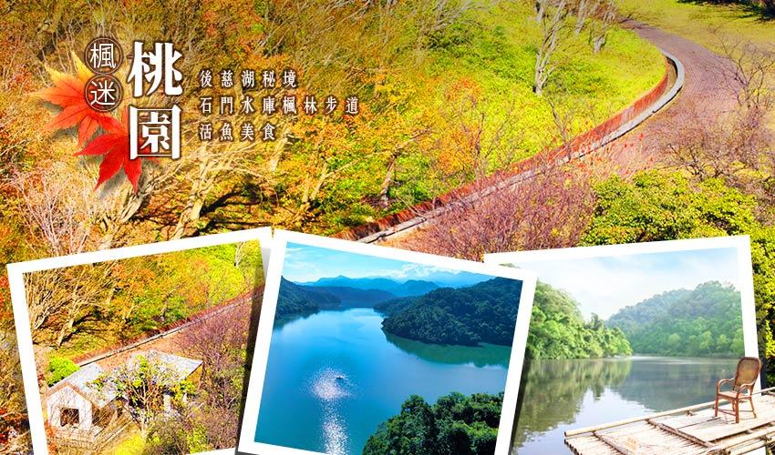 全台賞楓攻略1|北部秋季必去的楓紅景點與落羽松秘境大公開! txg01bs23 ad