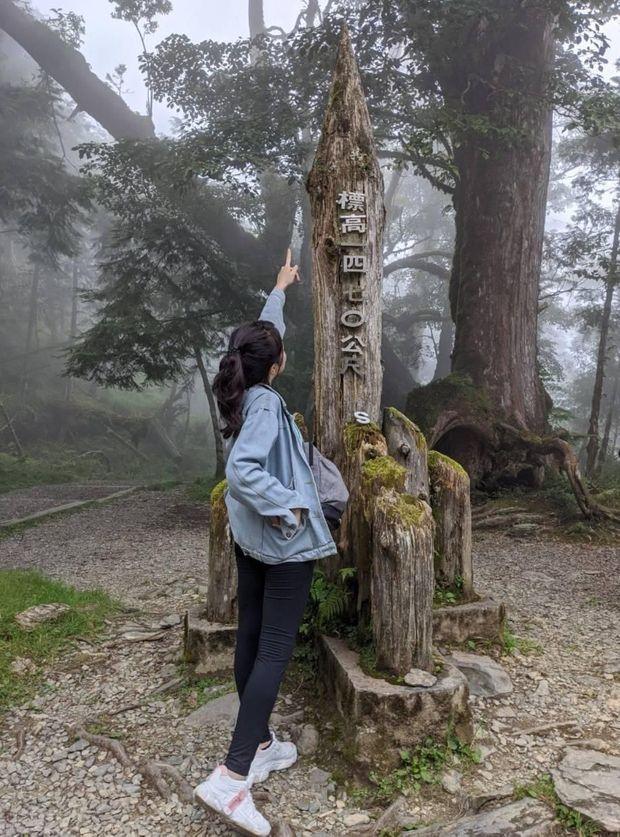 【宜蘭】棲蘭馬告神木園,前進全亞洲最大檜木園區與迷霧森林 宜蘭的力麗馬告神木園Taiwan Yilan 15