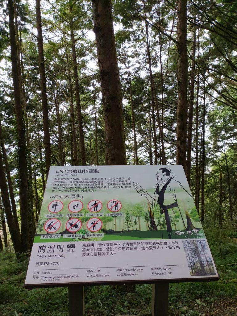 【宜蘭】棲蘭馬告神木園,前進全亞洲最大檜木園區與迷霧森林 宜蘭的力麗馬告神木園Taiwan Yilan 2 1