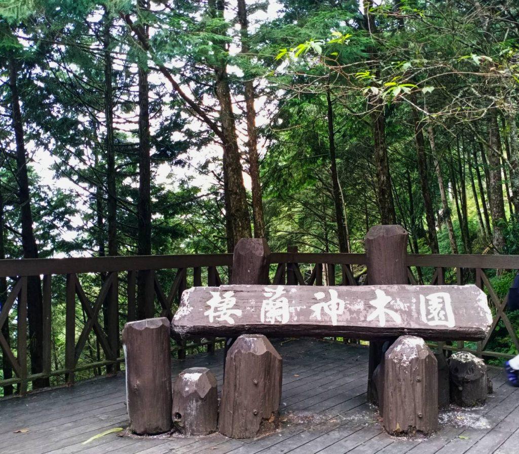 【宜蘭】棲蘭馬告神木園,前進全亞洲最大檜木園區與迷霧森林 宜蘭的力麗馬告神木園Taiwan Yilan 2