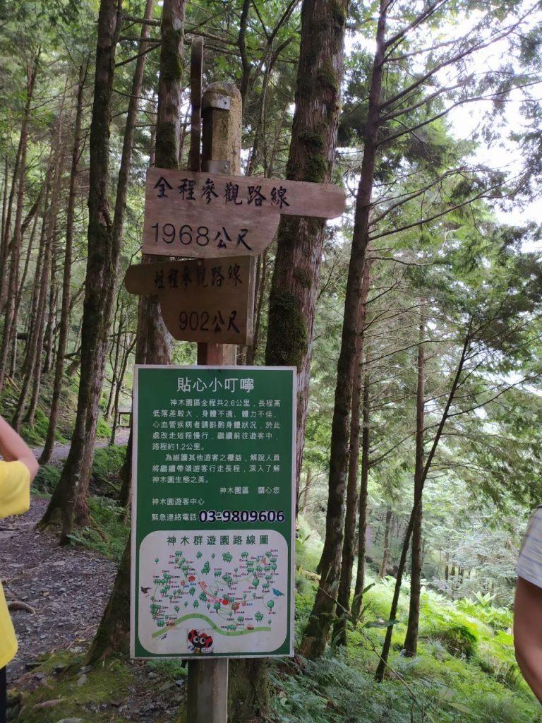 【宜蘭】棲蘭馬告神木園,前進全亞洲最大檜木園區與迷霧森林 宜蘭的力麗馬告神木園Taiwan Yilan 3