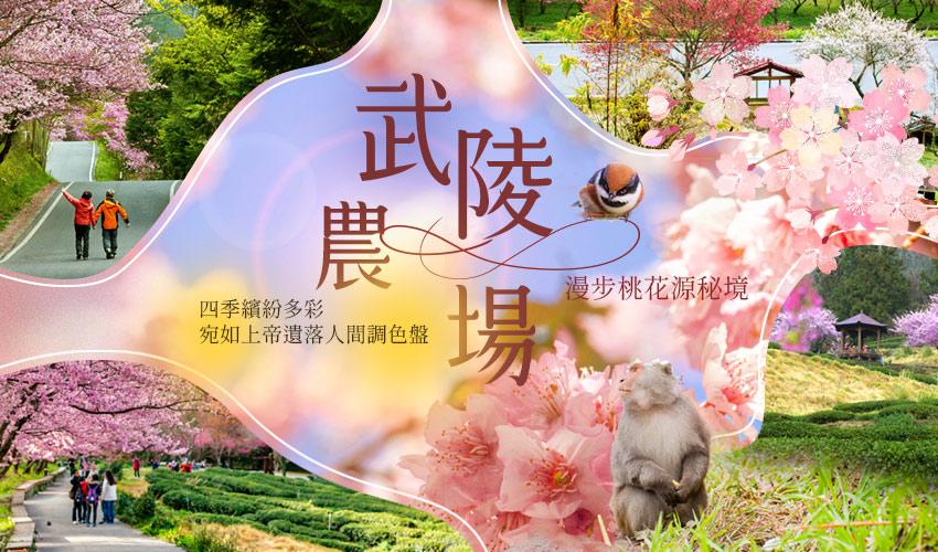台中武陵農場攻略寶典|四季花卉、交通、自助餐、導覽解說等,看這篇就對啦! 武陵農場 Wuling Farm 25