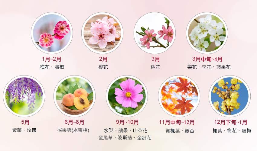 台中武陵農場攻略寶典|四季花卉、交通、自助餐、導覽解說等,看這篇就對啦! 武陵農場 Wuling Farm 29