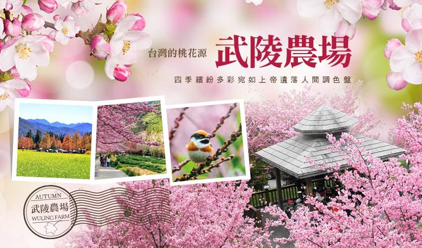 台中武陵農場攻略寶典|四季花卉、交通、自助餐、導覽解說等,看這篇就對啦! 武陵農場 Wuling Farm 30