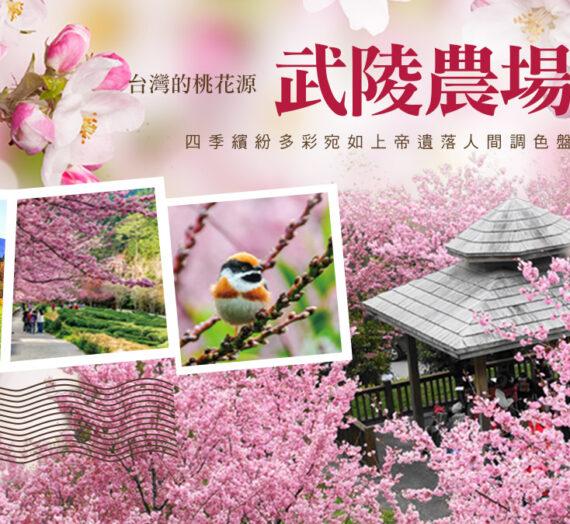 台中武陵農場攻略寶典|四季花卉、交通、自助餐、導覽解說等,看這篇就對啦!