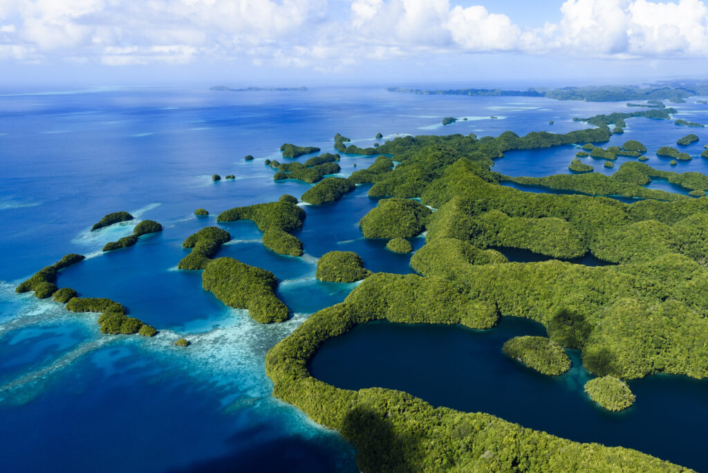 帛琉泡泡旅遊|必去5大景點 · 世界級潛點推薦 帛琉 iStock 625380028
