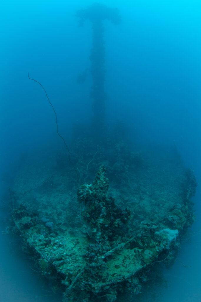 帛琉泡泡旅遊|必去5大景點 · 世界級潛點推薦 iStock 1143585304 1