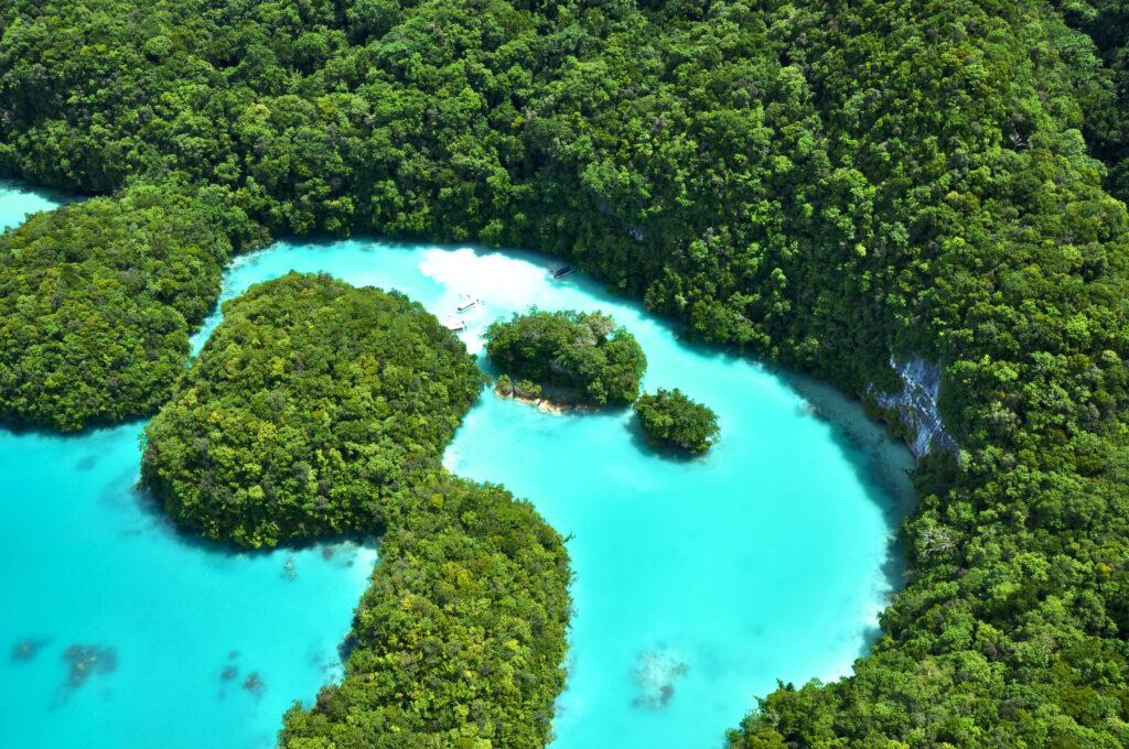 帛琉泡泡旅遊|必去5大景點 · 世界級潛點推薦 iStock 185891041