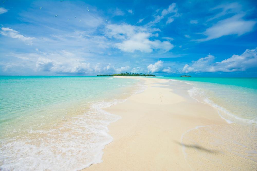 帛琉泡泡旅遊|必去5大景點 · 世界級潛點推薦 shutterstock 1389609269