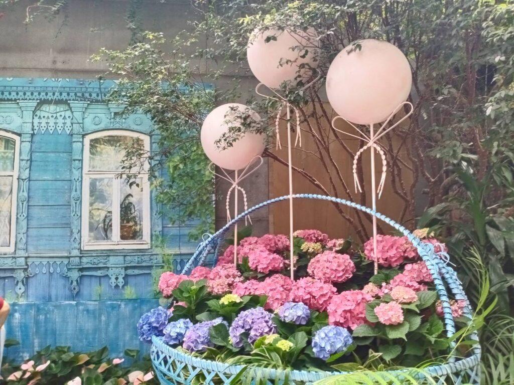 繽紛春夏.花卉特輯|繡球花、油桐花、高山杜鵑、劍蘭花、阿勃勒、金針花!山富賞花最前線 440229