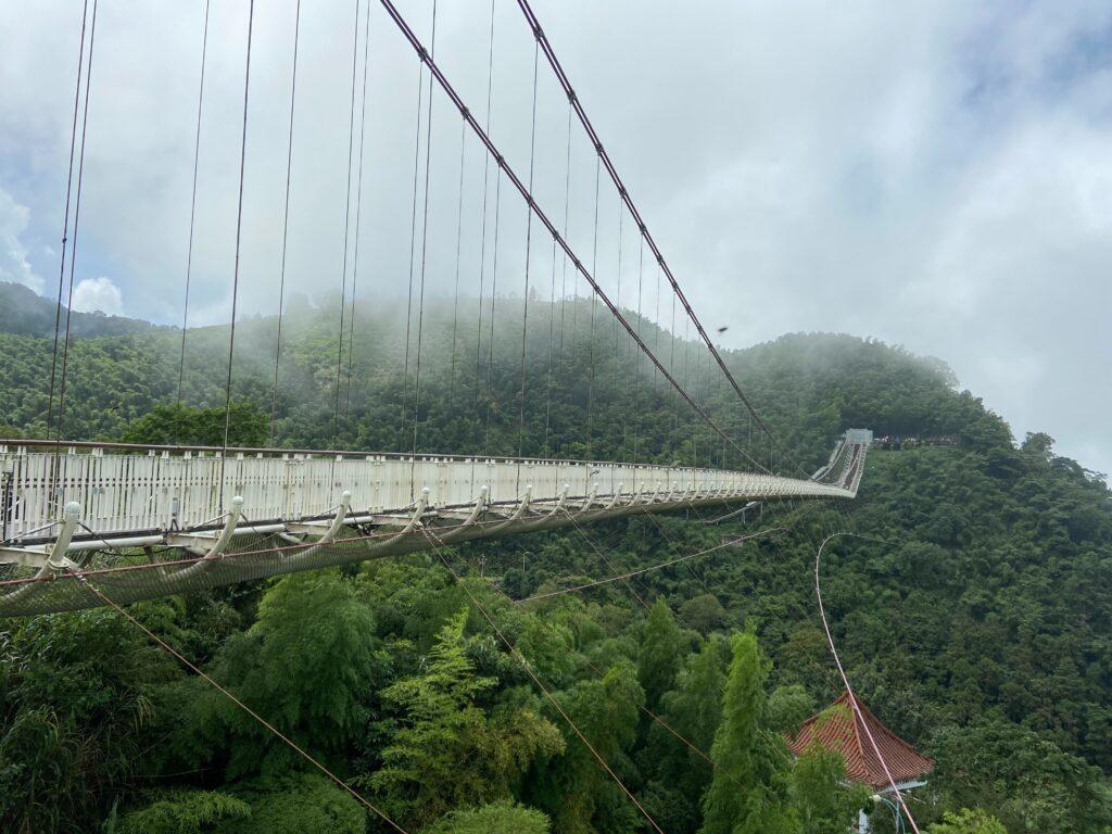 嘉義雲林一日打卡景點-走訪太平雲梯,漫步雲端的天空之旅! 嘉義打卡景點 蘿莎玫瑰山莊 空氣圖書館 太平雲梯 6