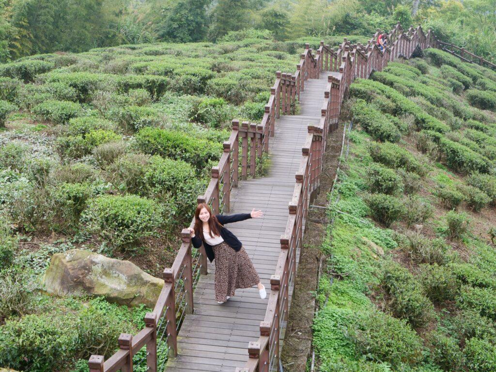 嘉義雲林一日打卡景點-走訪太平雲梯,漫步雲端的天空之旅! S 49135799